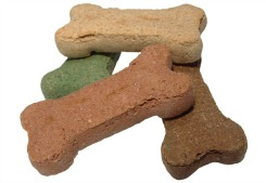 Dog Treats_Featured on www.blog.marketresearch.com