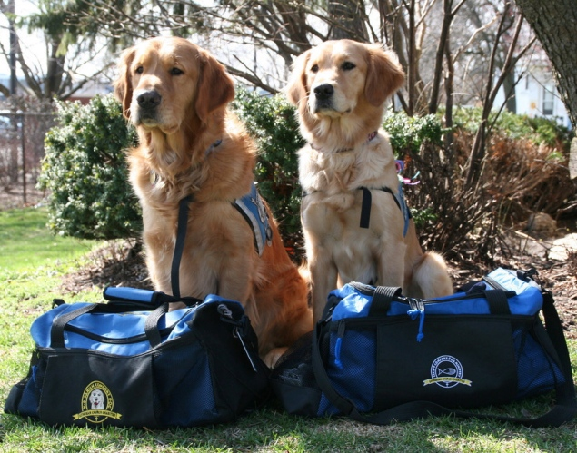 Puppy Love Helps Nation Heal After Tragedies | MarketResearch.com