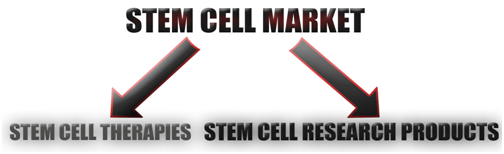 Stem_Cell_Market, featured on www.blog.marketresearch.com
