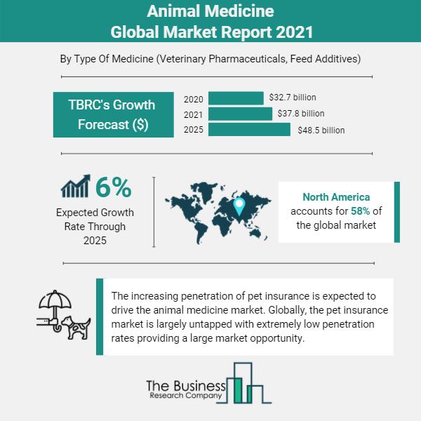 Animal Medicine Infographic (002)