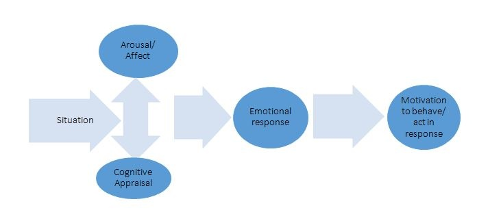 Elucidating The Truth In Market Research Through Emotion Analysis