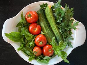 Home Food Gardening Surges During the COVID-19 Pandemic