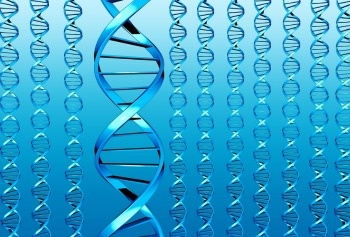 Genetic Testing_1.jpg