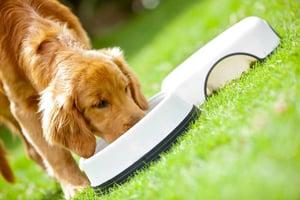 U.S. pet food industry data