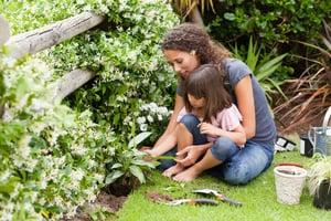 Gardening industry statistics