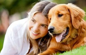 Pet industry statistics