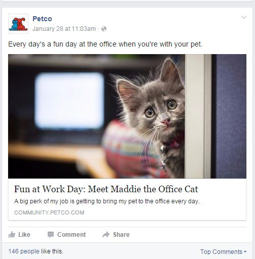 How Pet Retailers Engage Online Consumers