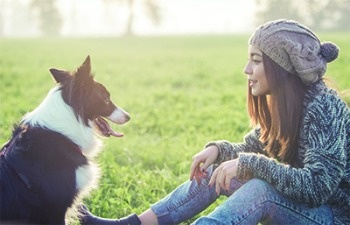 Projected 2017 Trends in the Pet Industry