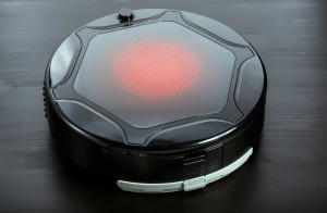 Domestic Robots Now and in the Future