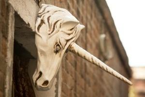The Future of Billion-Dollar Startup Unicorns