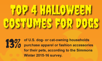 Infographic: Top 4 Halloween Costumes for Dogs