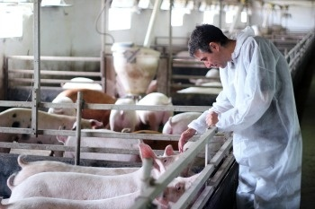 Animal Welfare an Increasing Concern for Consumers